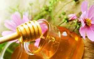 Кушаем мёд с крекерами