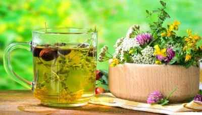 Лечение отварами и рецепты приготовления