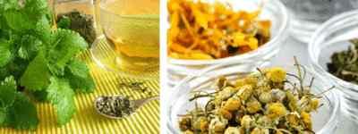 Травы для приготовления лечебного и расслабляющего чая