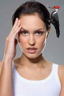 Характеристики проявления головной боли при мигрени