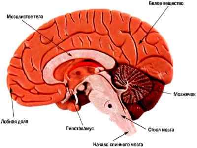 Нарушение внутримозгового кровообращения