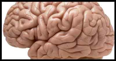 Органические поражения мозга