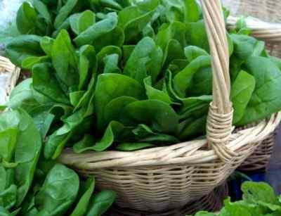 Пищевые продукты, содержащие тирамин