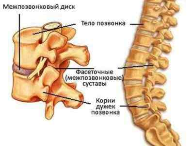 Болит в спине слева под лопаткой отдает в плечо